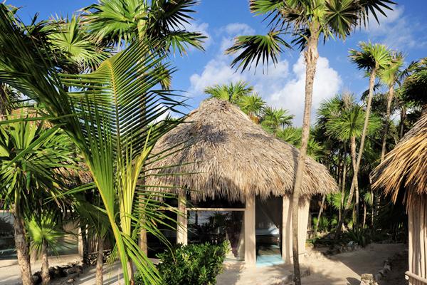 Papaya Playa Restaurant Menu