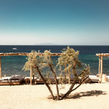scorpios_mykonos_beach_3