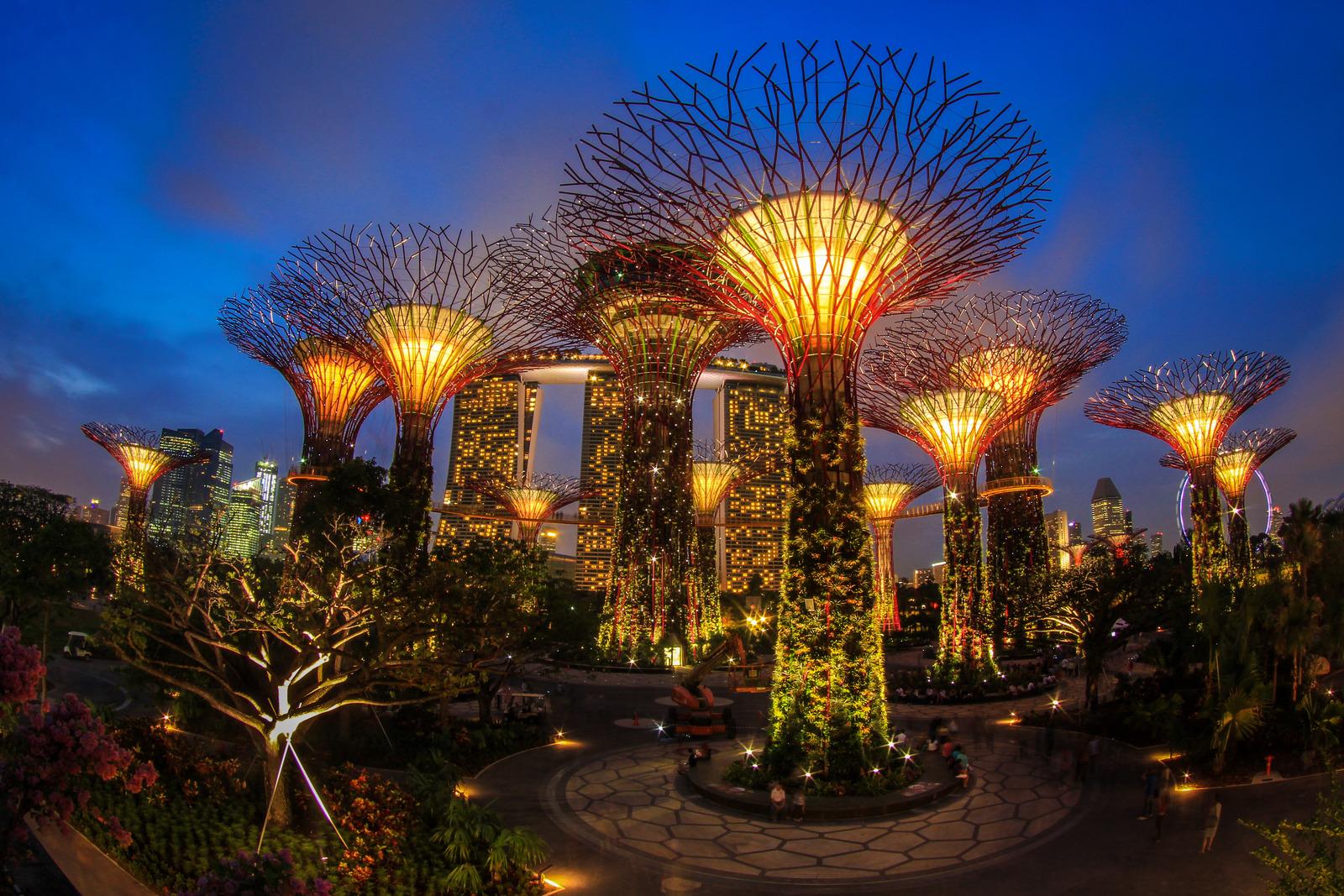Gardens By The Bay | | DESIGNSIGH
